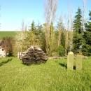 Vegetazione e sculture di Ca' la Ghironda