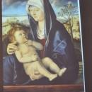 Giovanni Bellini, Madonna con il Bambino 1490 - 1500.
