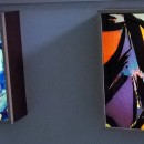 Foto di sezioni sottili retroilluminate, esposte presso l'Accademia Galileiana di Padova